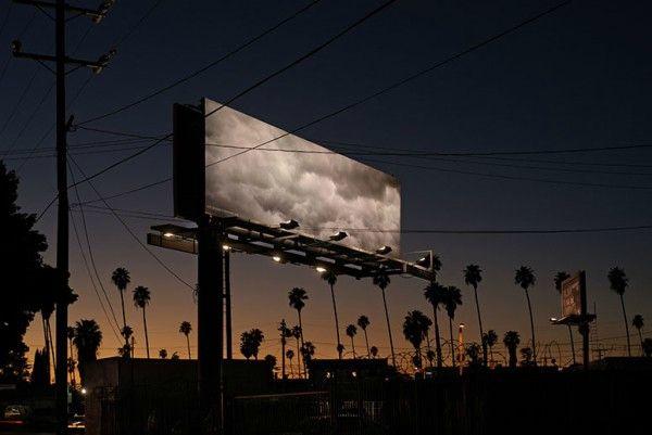 billboard_kerri_tribe-600x401