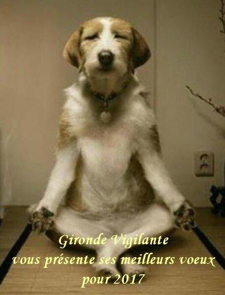 chien zen 1
