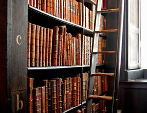 Trinity_College_Library_words_in_leather_and_wood