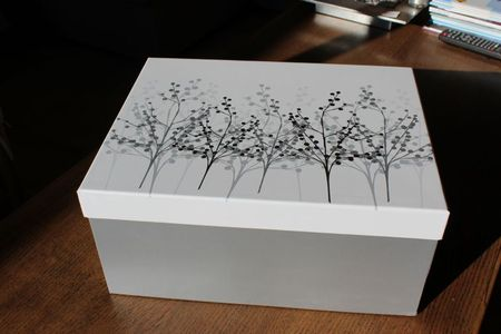 Baby Box (9)