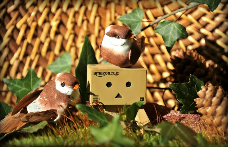 Danbo-automne3