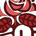 Hémorragie de militants et effondrement des recettes au parti socialiste