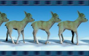 Antilope_logo