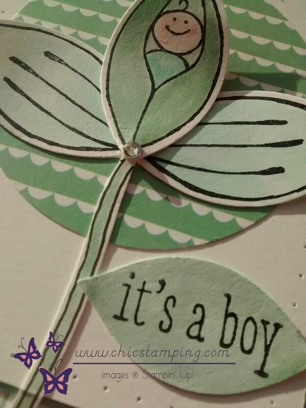 It's a boy- Friends & flowers 1