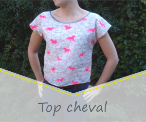 Top cheval