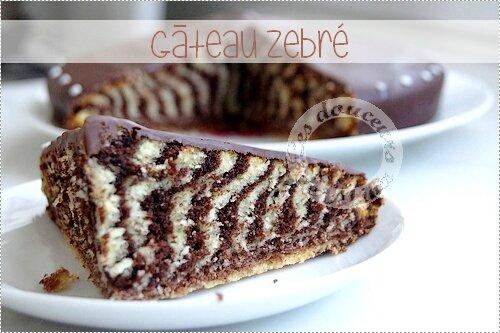 Gâteau_Zebré022