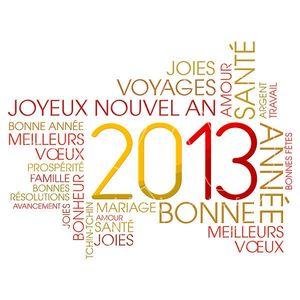 2013-voeux-textuels_xlarge