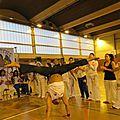 Festival de capoeira à chelles.