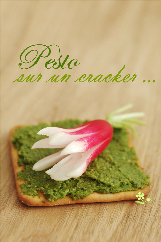 Pesto sur un cracker