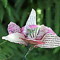 De livres en fleurs...