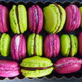 Macarons choco menthe