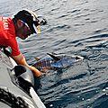 pêche aux thons rouge (32)