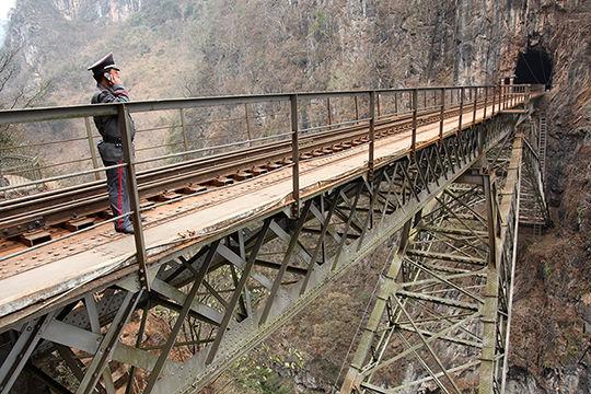 Chemin_de_fer_du_Yunnan___Chinopsis___Adeline_Cassier