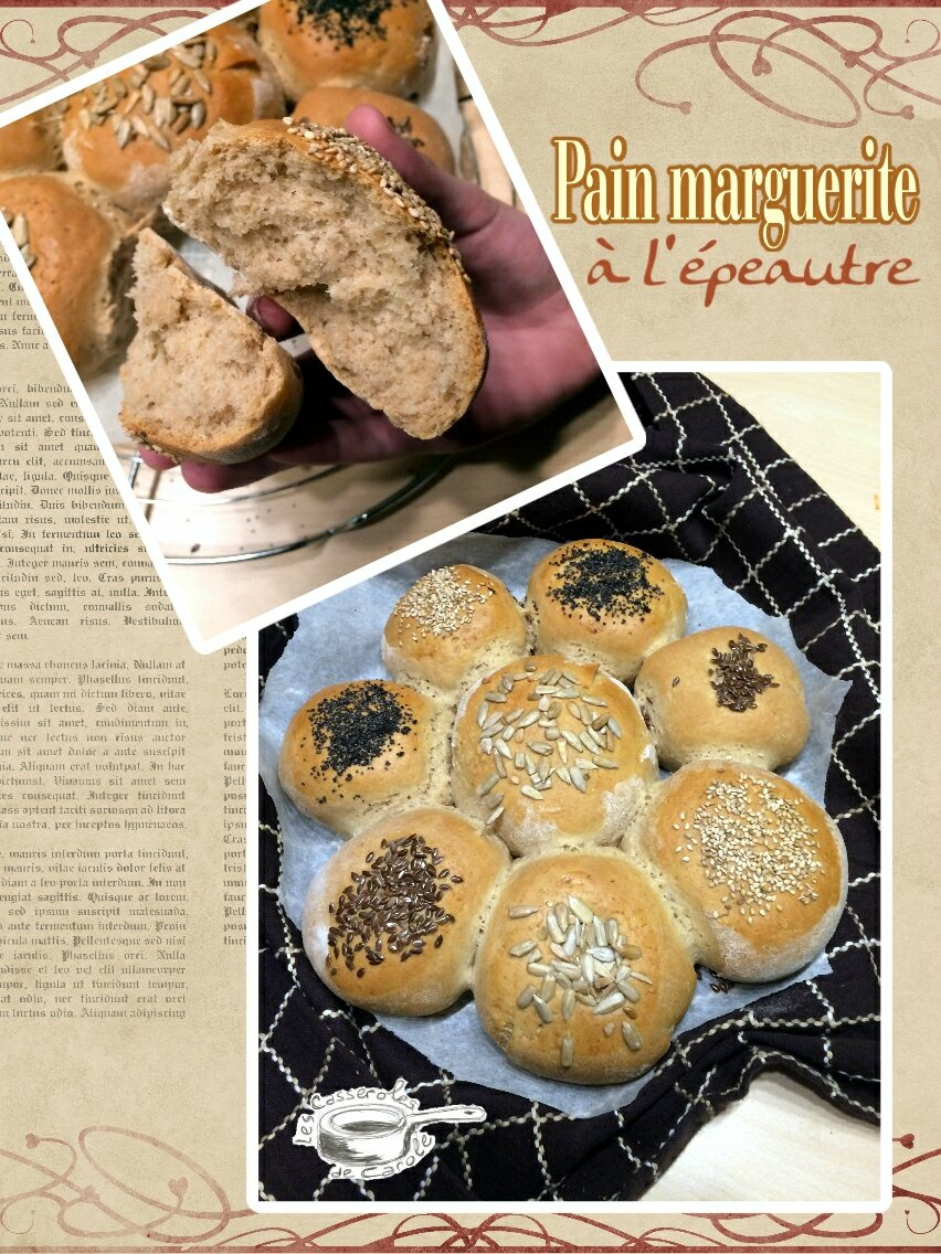 Pain marguerite l 39 peautre blogs de cuisine for Marguerite cuisine