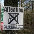 terrain de paintball à VITTEL (88)