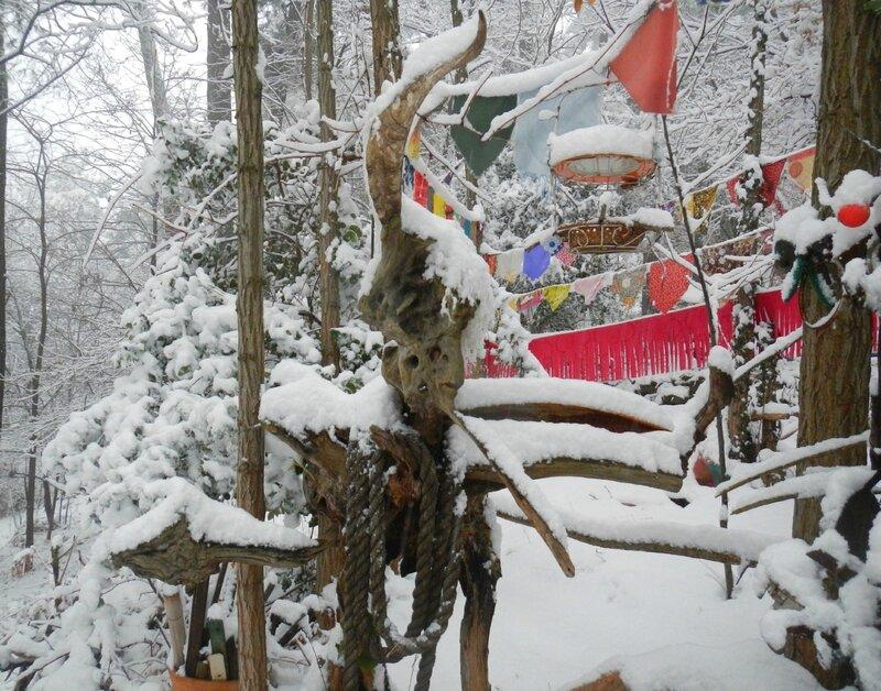 souchard pinochisus sous la neige