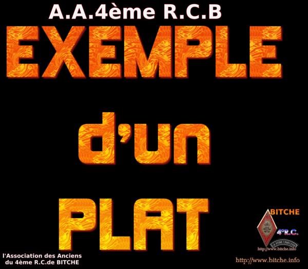 EXEMPLE D'UN PLAT 001