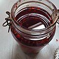 framboises et vinaigre de framboises (4)