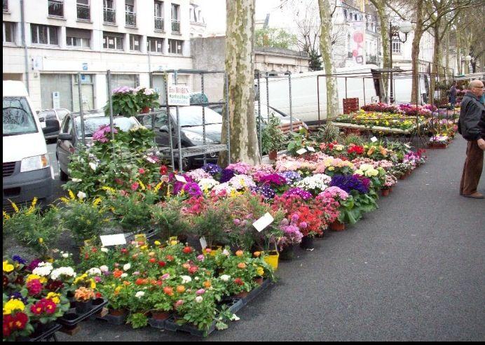 March__aux_fleurs