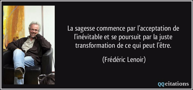citation-la-sagesse-commence-par-l-acceptation-de-l-inevitable-et-se-poursuit-par-la-juste-transformation-frederic-lenoir-146161