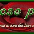 Une rose Passion