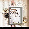 ELISA64 (2) copie