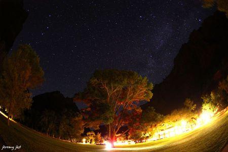 zion night star 1