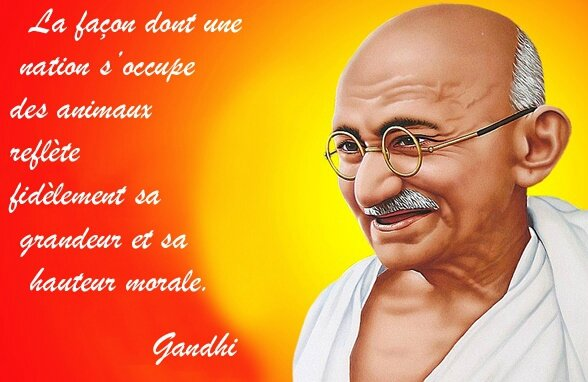 happy-gandhi-jayanti-2016-images-hd-wallpapers copie