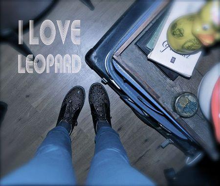 lov leo