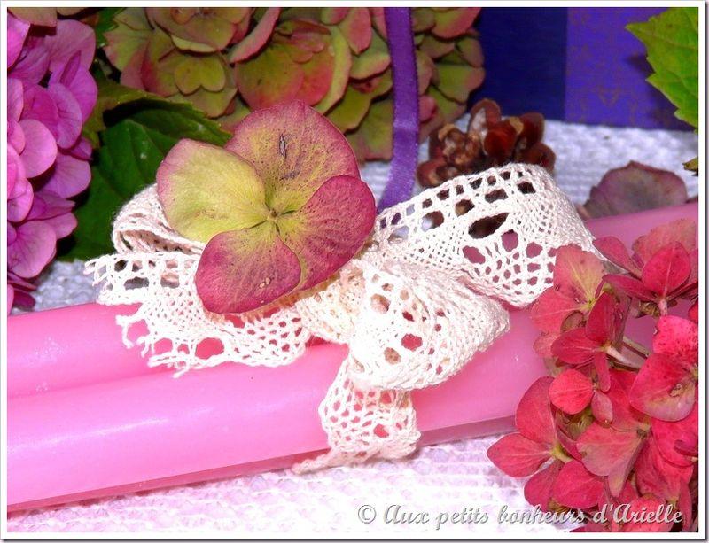 Hortensias aux couleurs de l'automne (14)