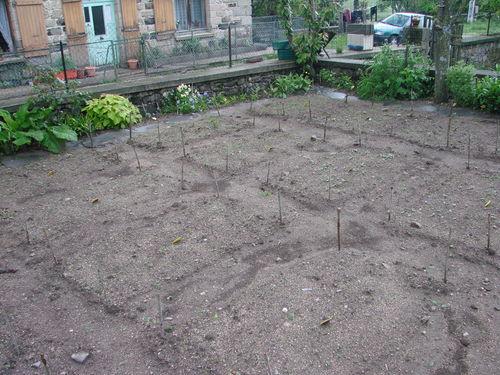 2008 05 31 Une partie de mon jardin