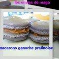 Macarons ganache pralinoise