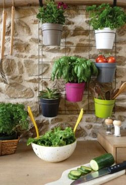 jardin balcon terrasse plantes page 6 le blog de moon. Black Bedroom Furniture Sets. Home Design Ideas