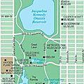 New york #7: central park