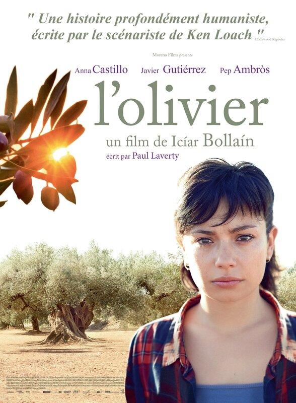 Affiche L'olivier