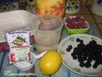P_tes_de_fruits_aux_m_res_sauvages_et_aux_framboises_004