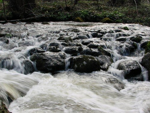 2008 04 23 Une rivère près du Chambon sur Lignon (5)