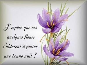 bonne_nuit_fleurs_24_2