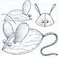 Petites souris à la noix