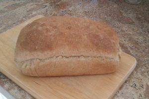 Whole Wheat Bread 2