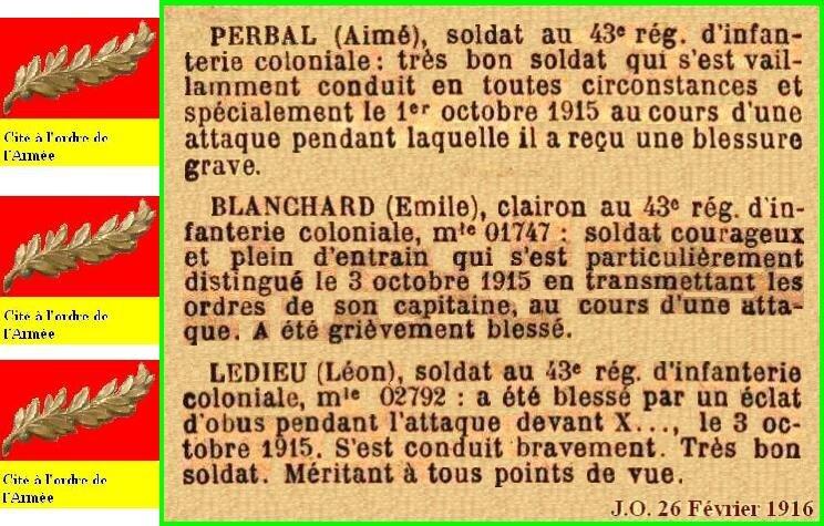 PERBAL_OCTOBRE19150103Palme