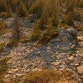 2008 04 27 Paysage vu depuis le sommet de la montagne du Meygal (3)