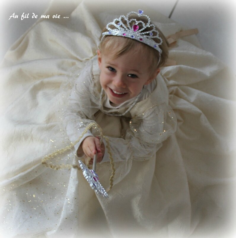 Robe princesse Peau d'ane ICdF Home made03