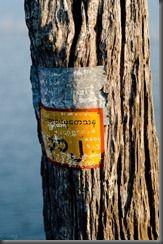 20111109_1657_Myanmar_7361