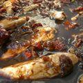 Poulet glacé au vinaigre balsamique et tomates confites
