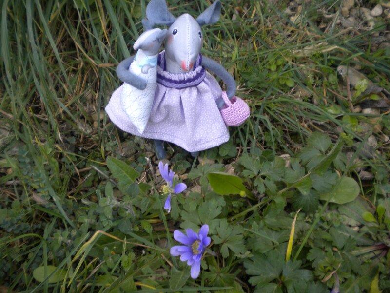 Souricette au jardin (2)