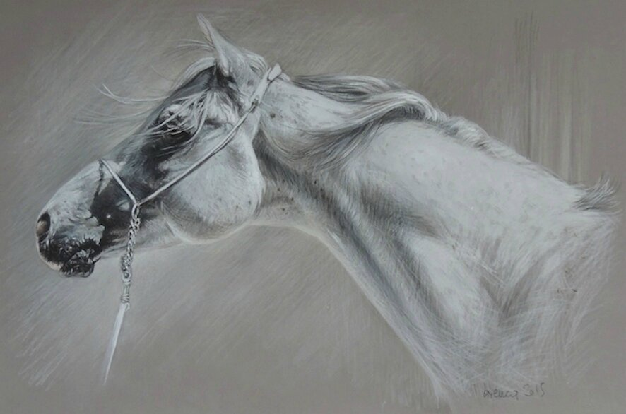 dessin cheval pastel