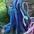 Chipiron Bleu