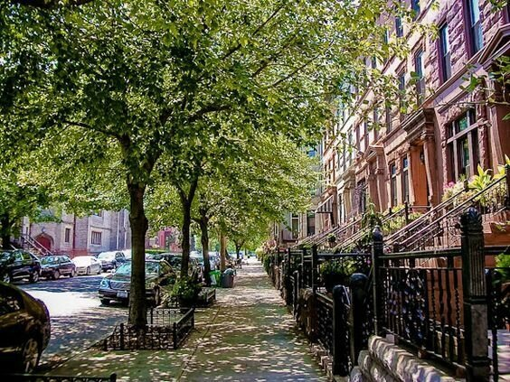 a996d734dd3a5df2878941010e96019f--crown-heights-brooklyn-brownstone