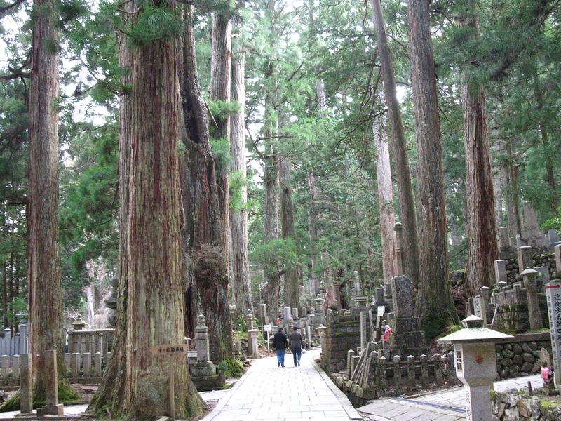 Le fameux cimetière Oku-no-in